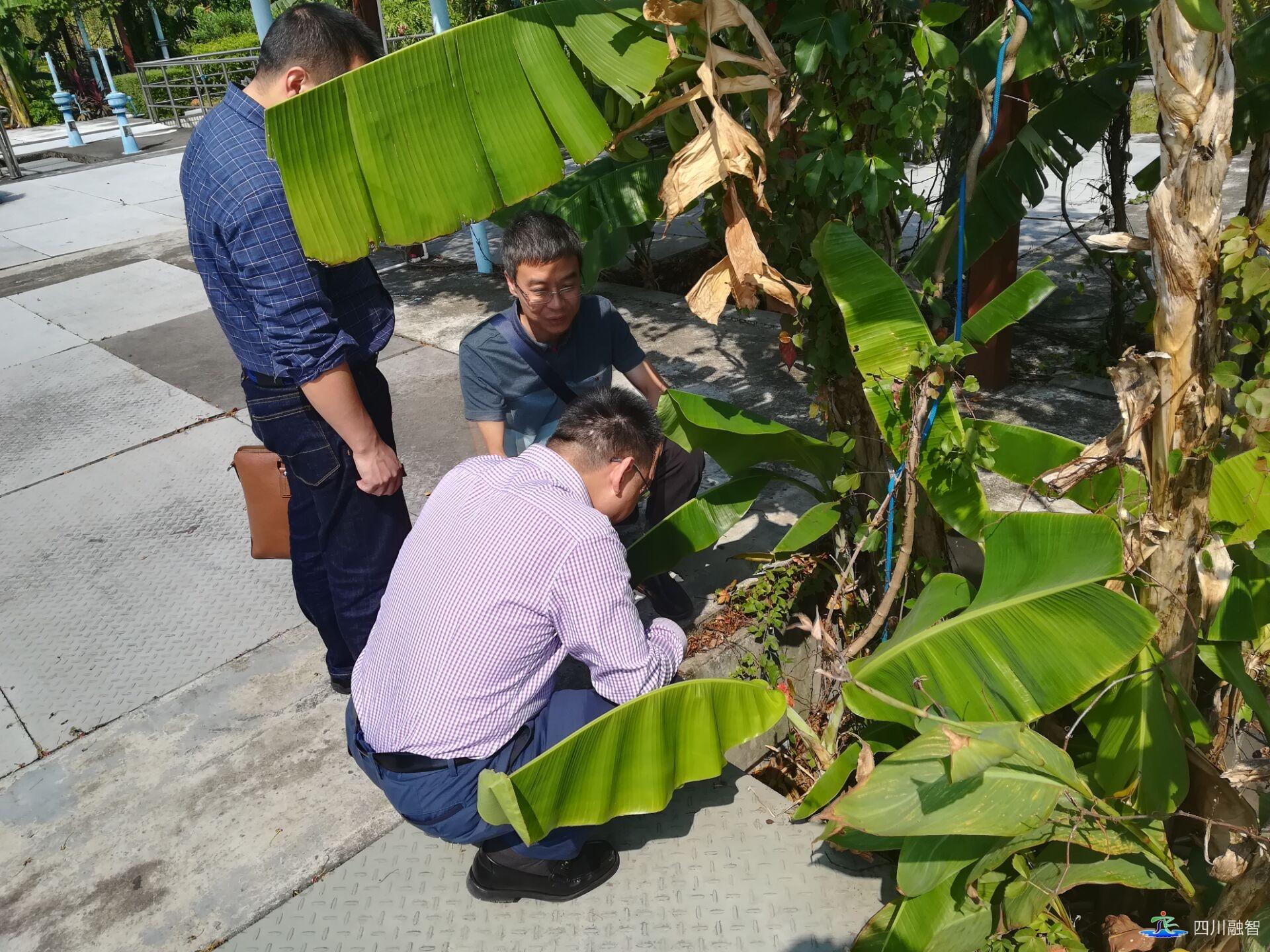考察学习深圳市新型污水处理技术
